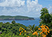 Plantation House Caribbean Vacation Villa - Mustique, Grenadines