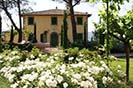 Umbria Italy Vacation Rental Home