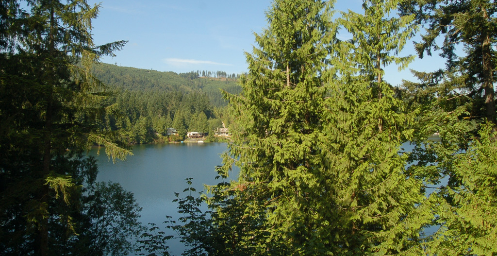Cabin 7 Mt Baker Maple Falls Holiday Letting Vacation